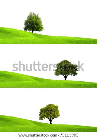 Eco Green - stock photo