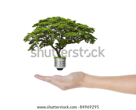 eco green energy saving in the future concept, hand holding tree growing out of electric light bulb - stock photo