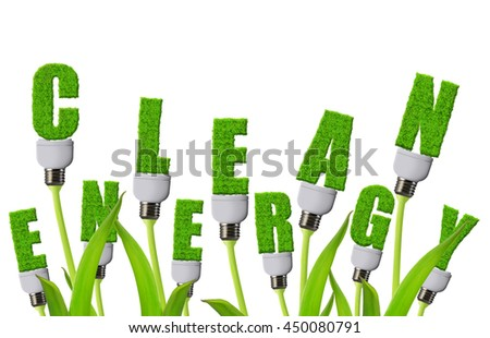 Eco light bulbs growing on plant isolated on white background. Clean energy concept.