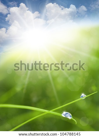 Eco Nature Background with Grass, Sun and Blue Sky Reflections into Waterdrops - stock photo