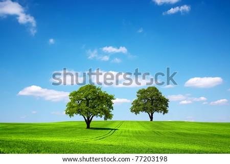Eco Planet - stock photo
