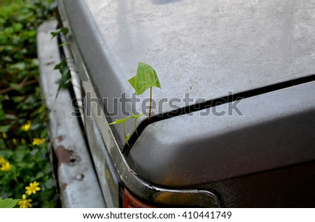 Eco plant begins its life and grows from the trunk of an old wrecked car. Ecology.