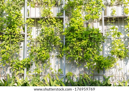 Eco structure - stock photo