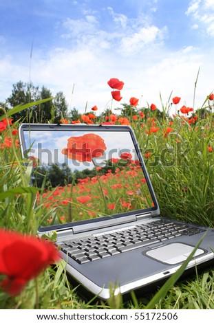 eco technology - stock photo