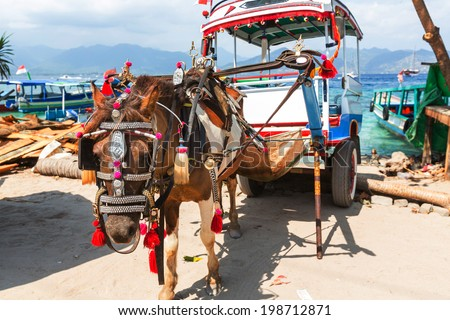 Eco transport on tropical islands Gili,Indonesia - stock photo