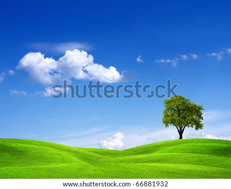 EcoGreen - stock photo
