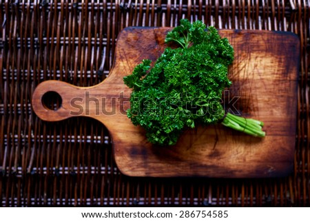 ecological clean bunch of parsley plucked from the greenhouse, fresh vegetables,copy space area - stock photo