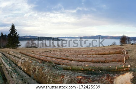 Ecological disasters - deforestation in Romania mountains - stock photo