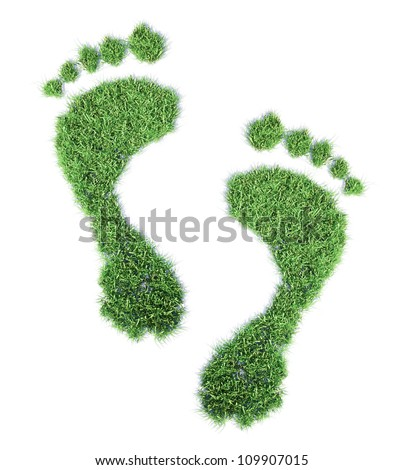 Ecological footprint concept illustration - grass patch footprint - stock photo