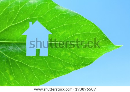 Ecological green house portrayed by a house shaped hole cut from a vibrant green leaf - stock photo