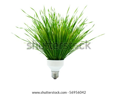 ecological lamp from a grass on a white background - stock photo
