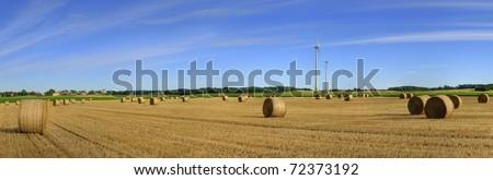 Ecological landscape - stock photo