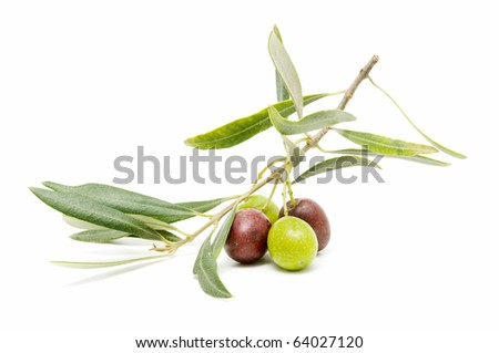 ecological olives