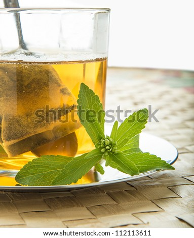 Ecological Stevia. Native to Paraguay - stock photo