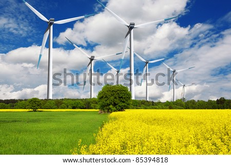 Ecological wind