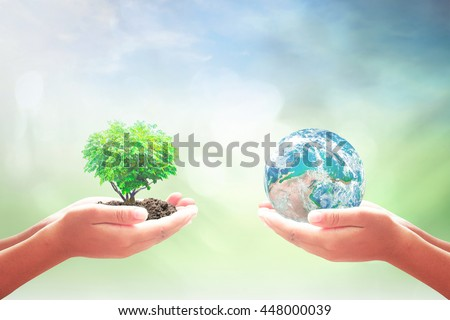 Ecology concept. Arbor CSR Crop Bio Donate Safe Kid Unity Kind Tree Trust Learn System Hour Plant Preserve New ROI Nature Quality Forest Global Food Globe. Elements of this image furnished by NASA