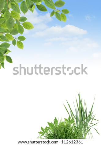 Ecology concept. Border made from green grass and leaves against blue sky.Nice background with blank space for text - stock photo