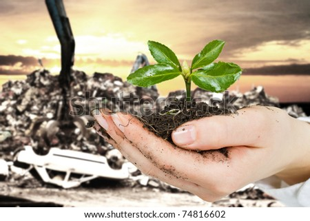 Ecology concept by small plant in hand with car dump in background. - stock photo