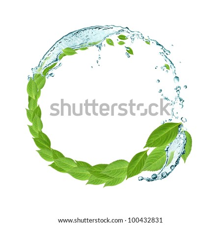 Ecology concept.Round frame made from green leaves and splashing water - stock photo