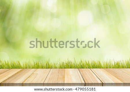 Ecology concept.  Spring Time  Nature  View Floor Relax  Morning Smooth Grow  concept.