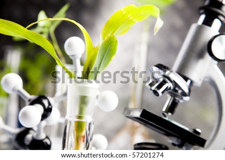 Ecology laboratory - stock photo
