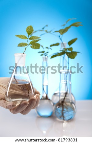 Ecology laboratory experiment in plants