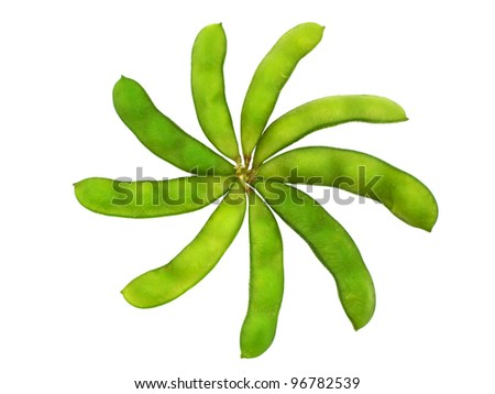 Edamame soy beans shelled in flower shape isolated with clipping path - stock photo