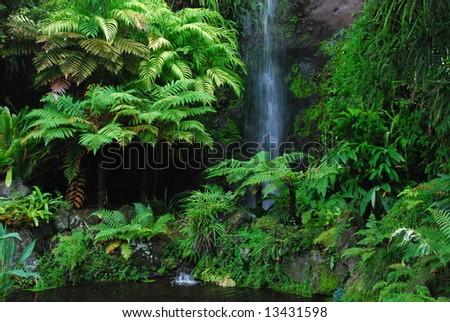 Eden Garden, Aucklan, New Zealand - stock photo