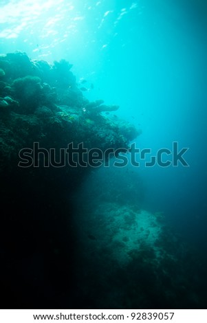 Edge of the deep water on coral reef - stock photo