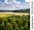 Edge of the forests and fields of wheat. Spring landscape. - stock photo