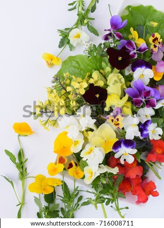 Edible flowers on white background stock photo royalty free edible flowers on white background mightylinksfo
