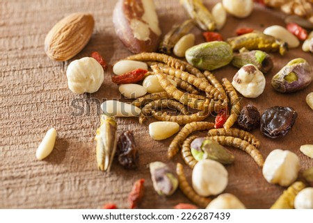 Edible insects and nuts  - stock photo