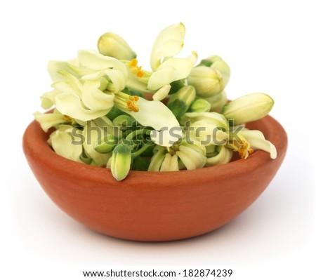 Edible moringa flower on a brown bowl over white backgrokund - stock photo