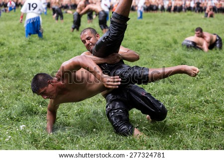 EDIRNE,TURKEY - July 5, 2013 :Unidentified oil wrestlers in Kirkpinar Wrestling Festival.Wrestlers oil their body and start wrestling.It is traditional and taken into UNESCO cultural heritage program.