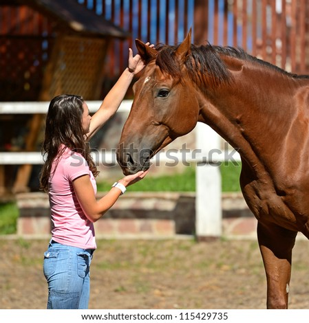 Educating of Horse in a riding hall