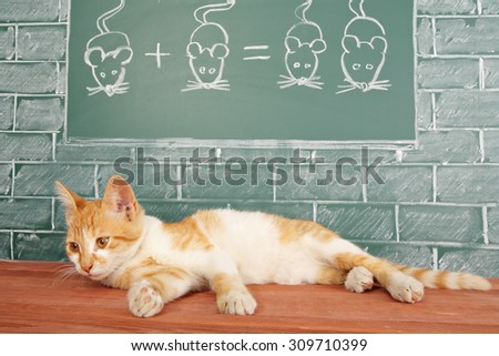 Education idea about red cat studied mathematics on example of addition of mice - stock photo