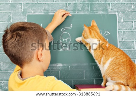 Education joke: The learner the cat who incorrectly solved a problem and his teacher - stock photo