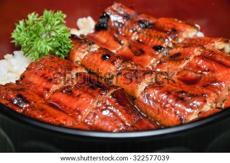 Eel and rice with sauce in bowl, Japanese food - stock photo