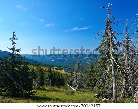 Effect of environmental pollution - a dead tree. Giant Mountains, Poland. - stock photo