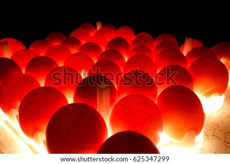 Egg candling is processed for hatchery inspection egg before hatchery