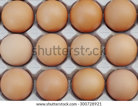Egg, Chicken Egg in the package - stock photo