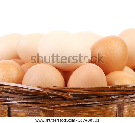 Egg collection isolated. Isolated on a white background