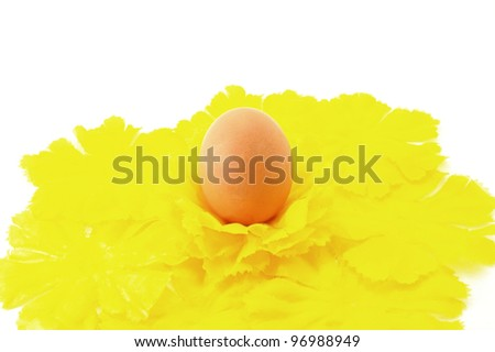 Egg Easter symbol with yellow decorative flowers - stock photo