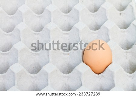 Egg in a carton package - stock photo