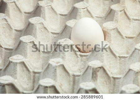 Egg in a paper tray, nobody agriculture. - stock photo