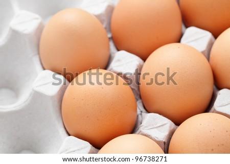 egg in box - stock photo