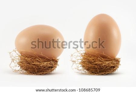 Egg in nest on white - stock photo