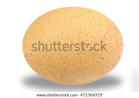 Egg , Isolate photo on white background