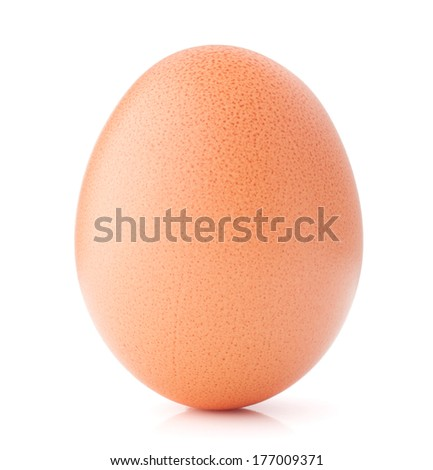 Egg isolated on white background cutout - stock photo