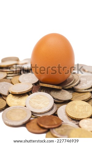 egg lying on coins